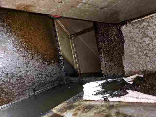Duct Cleaning Brisbane Horror Story